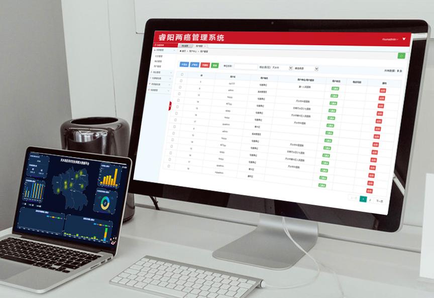 睿阳妇女两癌检查大数据管理平台